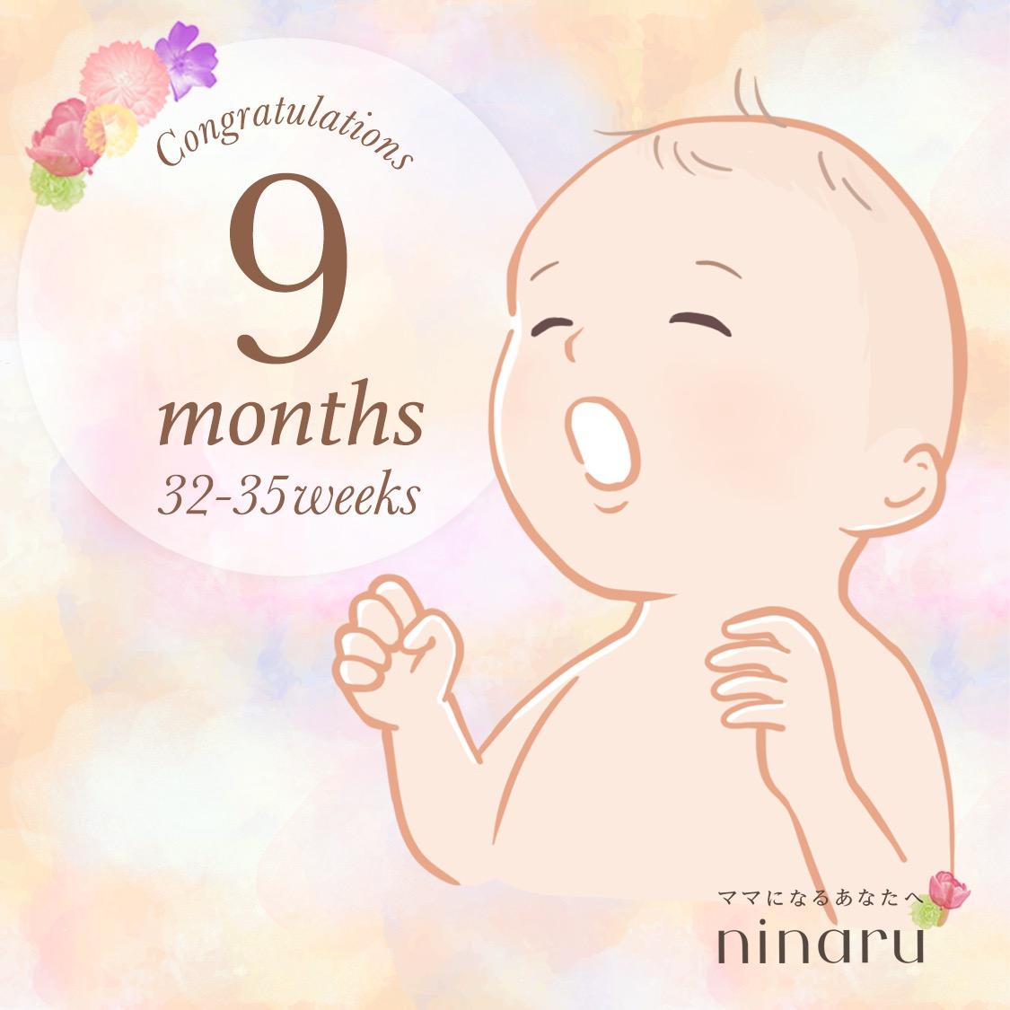 妊娠9ヶ月に突入しました!そして、もしかして後期づわり?