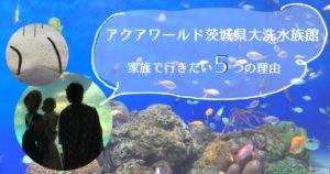 【家族観光におすすめ】家族で行きたい!アクアワールド茨城県大洗水族館が選ばれる5の理由とは